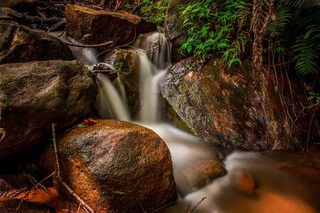spring water: Stream