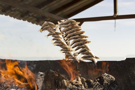 sardinas: Asar sardinas en la costa del sol Málaga España