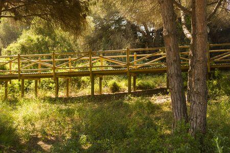 dunes of artola natural reserve located in Cabopino Marbella Costa del Sol Malaga Spain Stock Photo