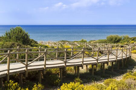 dunes of artola natural reserve located in Cabopino Marbella Costa del Sol Malaga Spain 免版税图像