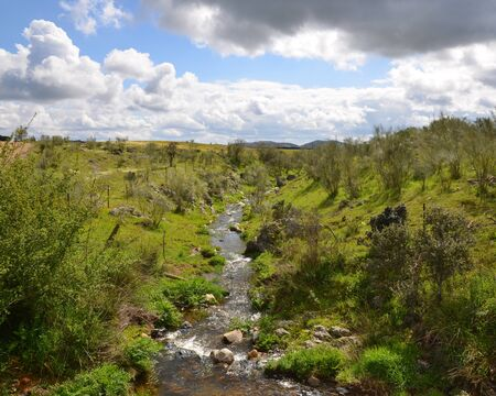 Streaming river flowing through a green countryside Stock Photo - 21169892