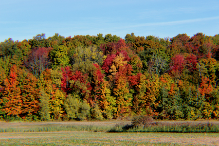 fall landscape: Fall landscape with great foliage