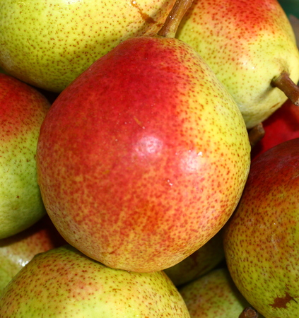 Pears Zdjęcie Seryjne