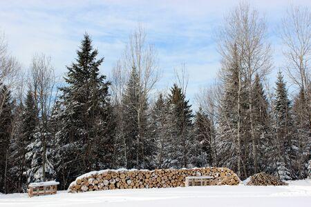 Wood pile in winter Stock fotó