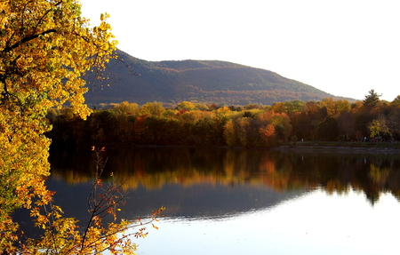 Trees reflecting in Richelieu River in Fall