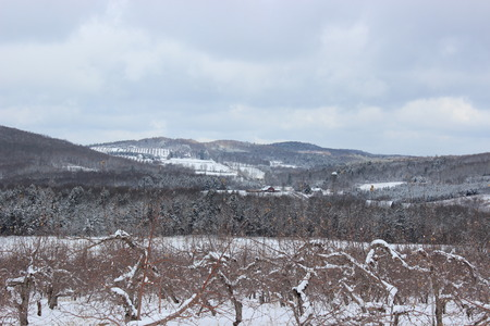 Winter Landscape in Dunham, Quebec