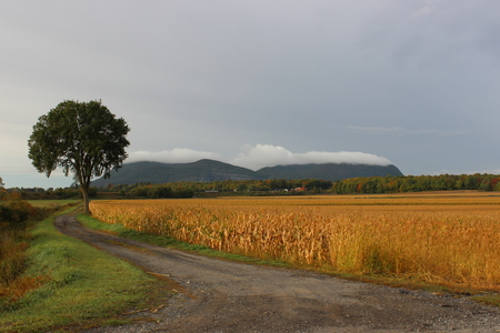 Mont-St-Hilaire in Quebec in early fall