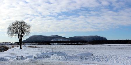 Mont-St-Hilaire viewed as a winter landcape