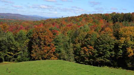 Fall in the Eastern Townships, Qc Stock fotó