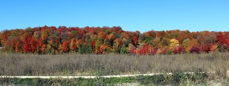 Fall Foliage in Southern Quebec