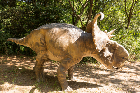 s horn: Herbivorous dinosaur with horns to defend themselves from predators