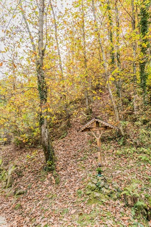 immersed: the cross of Jesus Christ immersed in the nature reserve of the Casentino in Tuscany
