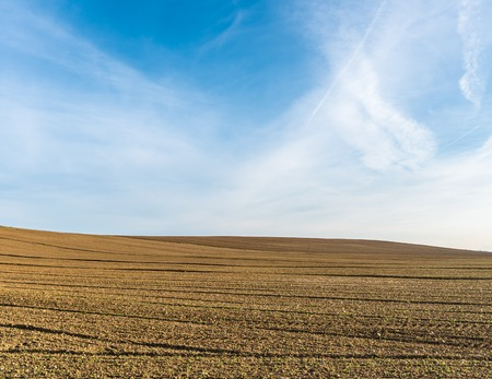 cultivated land: The campaign of Cortona between lines and colors of the cultivated land with wisdom