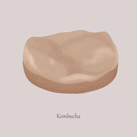 Kombucha, tea mushroom, tea fungus, or Manchurian mushroom on a gray background.
