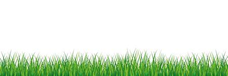 Seamless spring grass. Natural green saturated grass horizontal lawn lush ecological. Ilustração