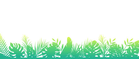 Green morning fern background. Horizontal decoration rainforests floral exotic background with elegant fondly green leaves fern wild natural meadow in rays of rising vector sun.