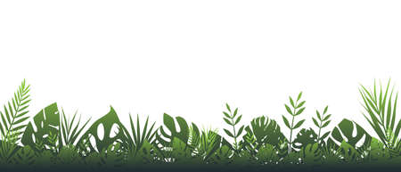 Dark green fern background. Horizontal decoration rainforests in cloudy wet weather floral botanical background elegant green fern leaves wild natural lawn in rays setting vector sun. Banque d'images - 150756637