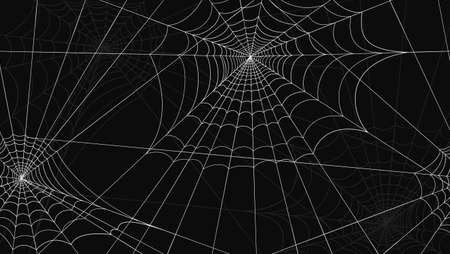 Spider web pattern seamless. White spider web drawings on black background graphic trap design danger of creepy insects abstract celebration vector halloween.