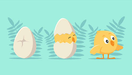 Development steps from an egg to chick. Cracked shell and emerging yellow cartoon cub joyful first birthday celebration cute young hen breaking free fluffy natural vector fun.