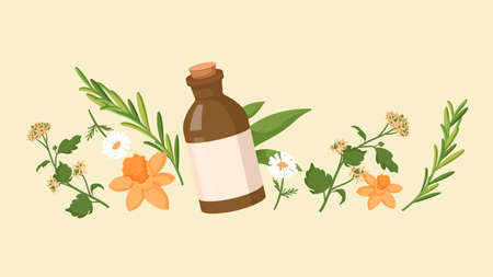 Natural homeopathy medicine. Healthy organic treatment brown bottle with oil extracts calendula and horsetail herbs homeopathic natural flat healing from diseases power vector colored plants.