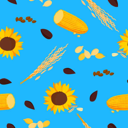 Sunflower with corn seamless pattern. Bright yellow flower with brown seeds roach with grains bushes of ripe wheat blue background golden autumn harvest farm vector economy. 矢量图像
