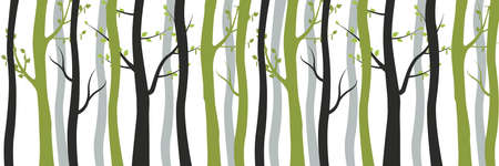 Green and withered black trees in forest background. Slender young birches with blossoming leaves and old dead trunks intertwined between vector itself.