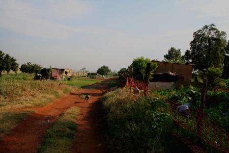gauteng: Rural living in Gauteng Africa