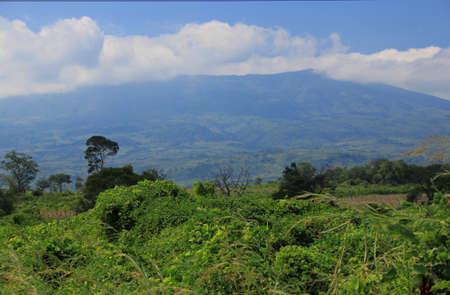 mozambique: Mount Gorongoza Mozambique