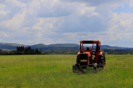 Small red tractor in green farm land
