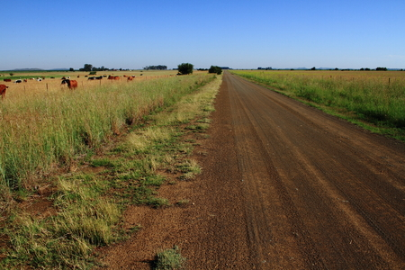 south africa soil: Sand roads and dirt tracks through open fields Stock Photo