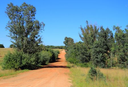 meanders: Dirt road meanders through the countryside Stock Photo