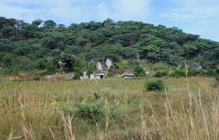self sufficient: Rural living - subsistence farm in Zimbabwe