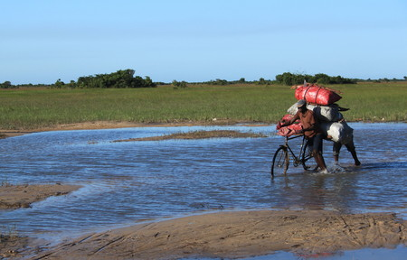 villagers: Rural living - villagers cross a flooded road in Mozambique, Africa