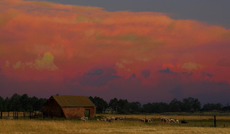 barnyard: Barnyard at sunset Stock Photo