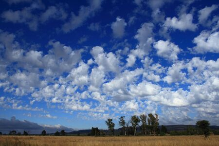 rural skyline: Autumn landscape with trees and clouds Stock Photo