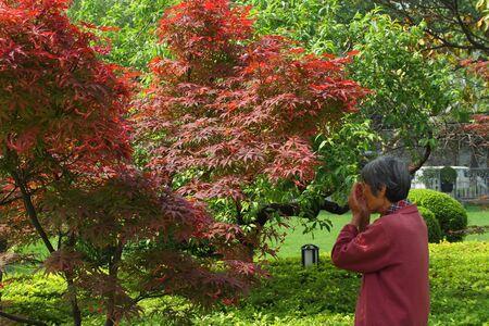 ritual: Woman performs Buddhist prayer ritual in Xian China Editorial