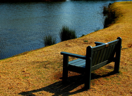 to ponder: Green bench next to a pond