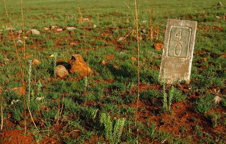 yardstick: Milestone in an open field Stock Photo