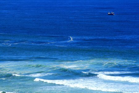 inshore: Fishing trawler working close in-shore