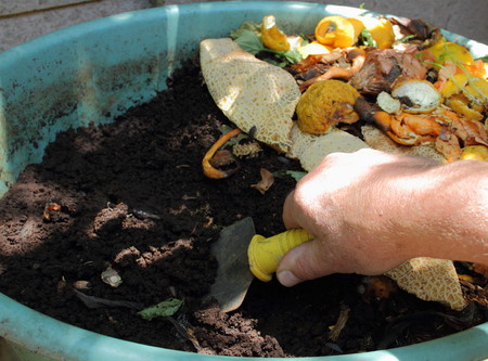 Making potting soil from a residential earthworm farm Stock Photo