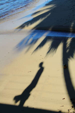 peron: Shadow of a man walking in the shadow of a palm tree on a beach