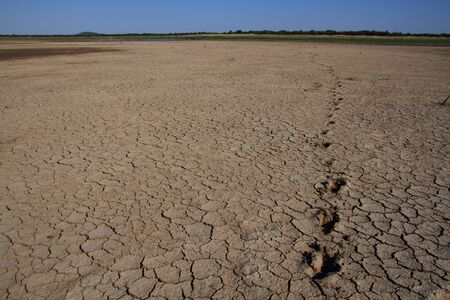 Footprints in dry, cracked mud Stock Photo