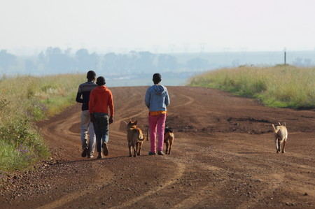 camaraderie: Children and their dogs walking on a dirt road