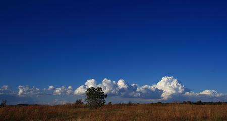 gauteng: Gauteng South Africa cloudscape