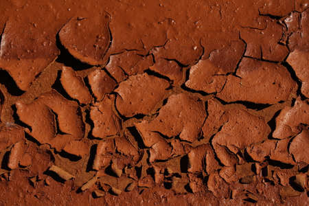 evaporating: Evaporating moisture in the soil forming cracked mud