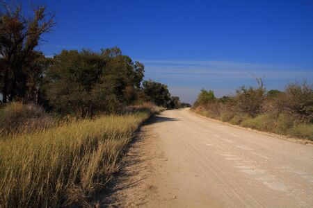 northwest africa: Dirt road through rural Northwest Province South Africa