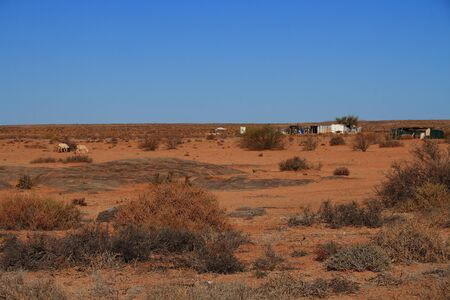 northern cape: Subsistence farming in the Northern Cape Province of South Africa