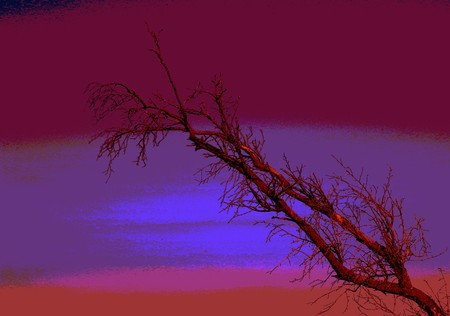 An abstract presentation of a dry branch silhouetted against a futuristic sky