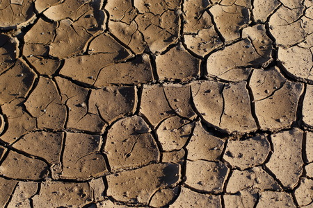 Wet surface soil cracks and dries with the heat of the sun