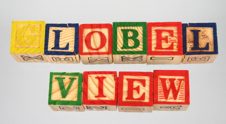 The term global view displayed visually on a white background using colorful wooden blocks